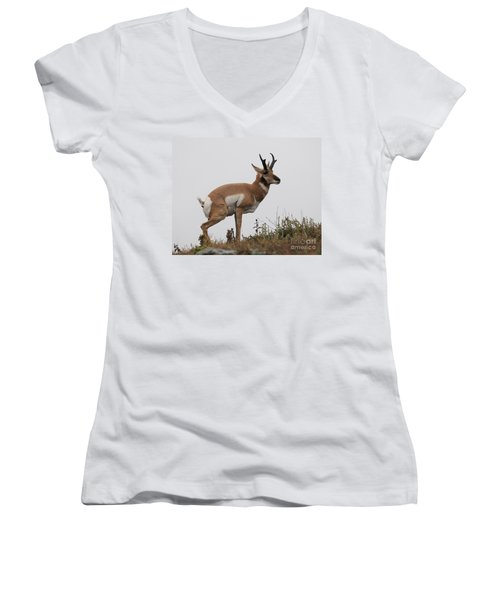 Antelope Critiques Photography Women's V-Neck