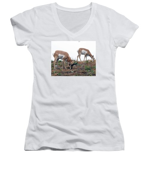 Women's V-Neck T-Shirt (Junior Cut) featuring the photograph Antelopes Grazing by Art Whitton