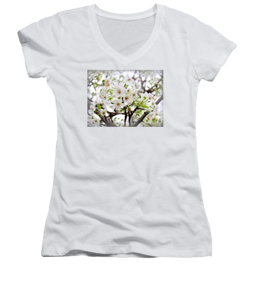 Women's V-Neck T-Shirt (Junior Cut) featuring the photograph Blooming Ornamental Tree by Kay Novy