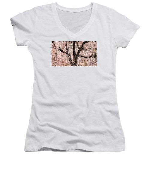Blossom Rain Women's V-Neck T-Shirt