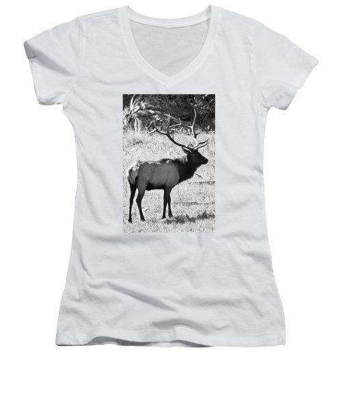 Bull Elk Women's V-Neck