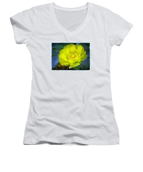 Women's V-Neck T-Shirt (Junior Cut) featuring the photograph Cactus Flower by Judi Bagwell
