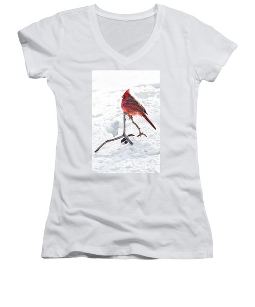 Women's V-Neck T-Shirt (Junior Cut) featuring the photograph Cardinal's Song by Tamyra Ayles