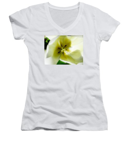 Ethereal Women's V-Neck T-Shirt (Junior Cut) by Rory Sagner