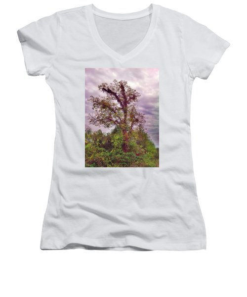 Women's V-Neck T-Shirt (Junior Cut) featuring the photograph Majestic  by Janice Spivey