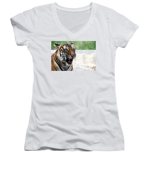 Women's V-Neck T-Shirt (Junior Cut) featuring the photograph Make My Day by Kathy  White