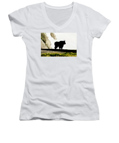 Nature's Silhouette Women's V-Neck T-Shirt (Junior Cut) by Colleen Coccia