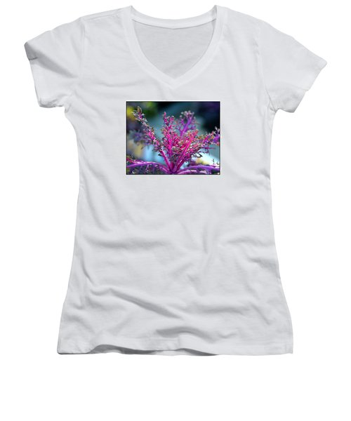 Women's V-Neck T-Shirt (Junior Cut) featuring the photograph Ornamental Cabbage by Judi Bagwell