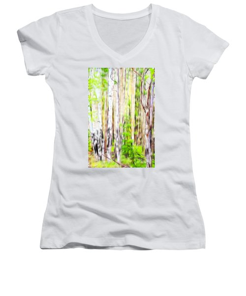 Out Of One Many Fractal Women's V-Neck