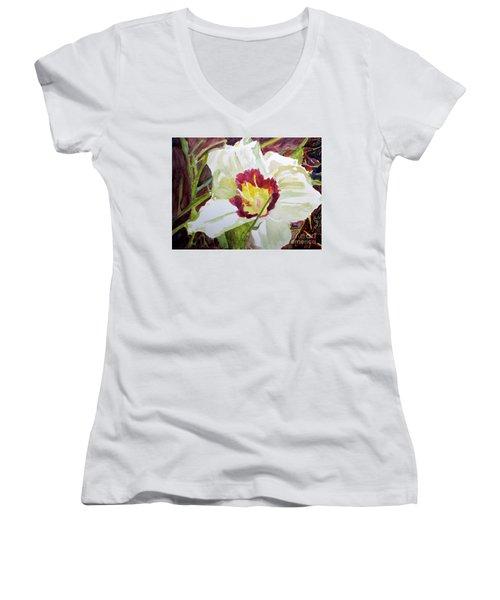 Pandora's Box Women's V-Neck T-Shirt