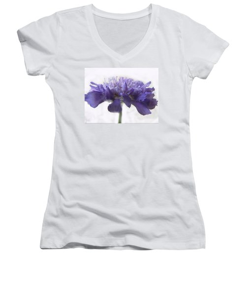 Women's V-Neck T-Shirt (Junior Cut) featuring the photograph Purple Pincushin by Debbie Portwood