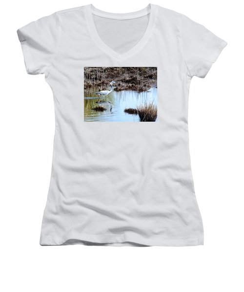 Reflections Of A Blue Heron Women's V-Neck T-Shirt