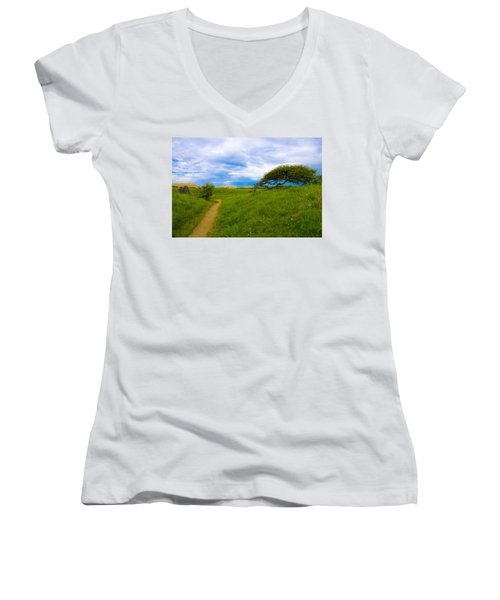 Rubjerg Path Women's V-Neck T-Shirt