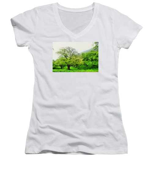 Salalah Green Women's V-Neck T-Shirt