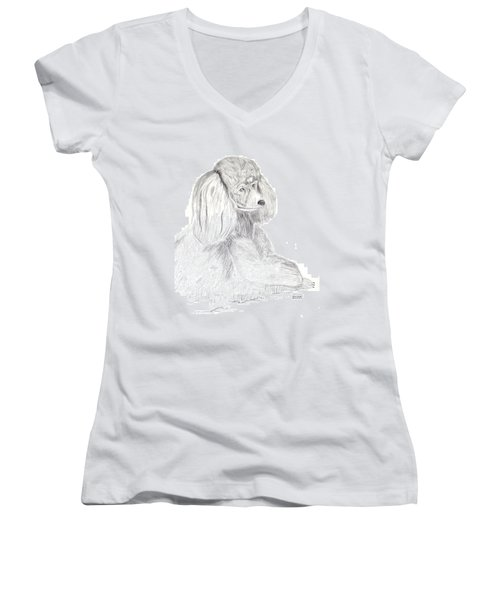 Silver Poodle Women's V-Neck T-Shirt (Junior Cut) by Maria Urso