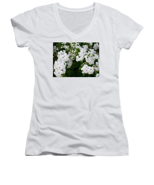 Spirea Blooms Women's V-Neck T-Shirt (Junior Cut) by Maria Urso