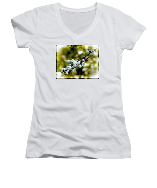 Women's V-Neck T-Shirt (Junior Cut) featuring the photograph Spring Bough by Judi Bagwell