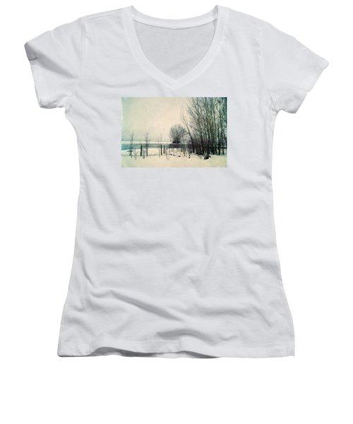 Spring Thaw Women's V-Neck T-Shirt