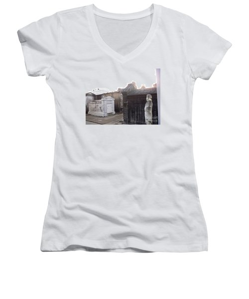 Women's V-Neck T-Shirt (Junior Cut) featuring the photograph Standing Guard by Alys Caviness-Gober