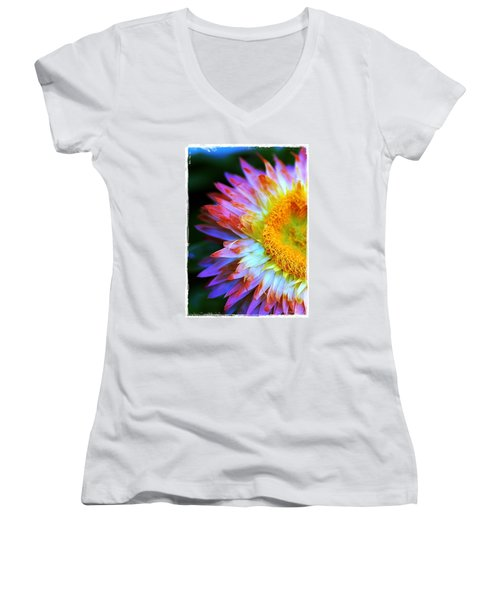 Women's V-Neck T-Shirt (Junior Cut) featuring the photograph Strawflower by Judi Bagwell