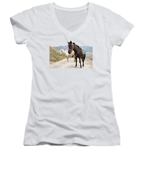 Women's V-Neck T-Shirt (Junior Cut) featuring the photograph Two Horses by Yew Kwang
