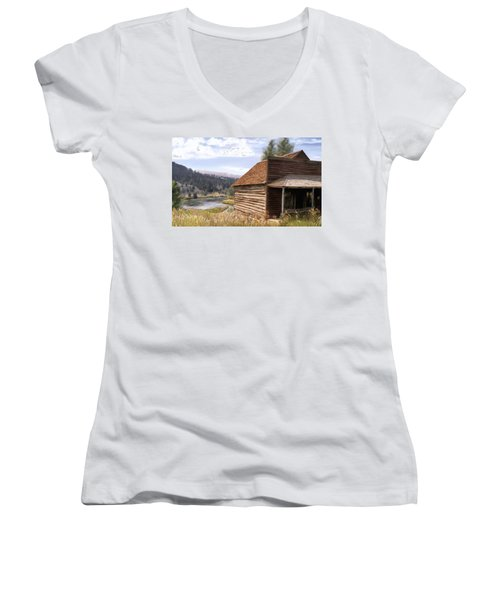 Vc Backyard Women's V-Neck T-Shirt (Junior Cut) by Susan Kinney