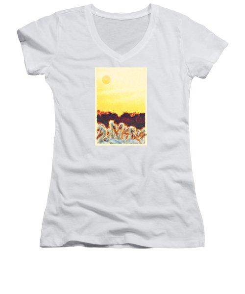 Women's V-Neck T-Shirt (Junior Cut) featuring the photograph White Pelicans In Sun by Dan Friend
