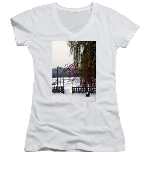 Willows And Berries In Winter Women's V-Neck T-Shirt (Junior Cut) by Desiree Paquette