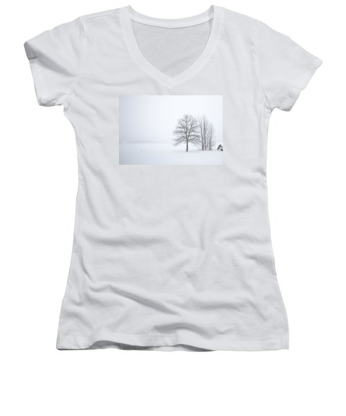 Winter Fog And Trees Women's V-Neck (Athletic Fit)