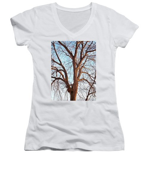Women's V-Neck T-Shirt (Junior Cut) featuring the photograph Winter Light by Chalet Roome-Rigdon