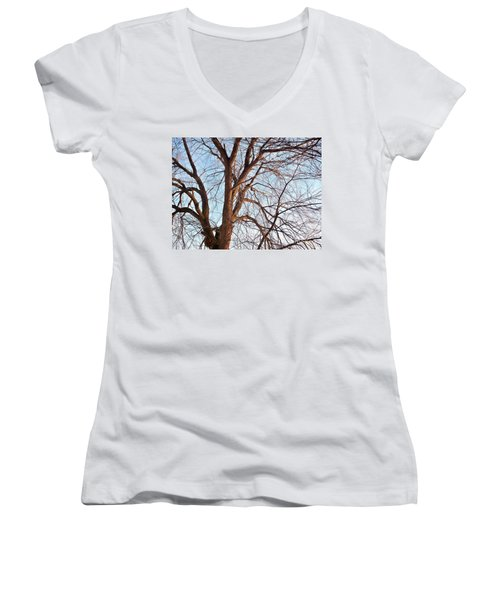 Women's V-Neck T-Shirt (Junior Cut) featuring the photograph Winter Sunlight On Tree  by Chalet Roome-Rigdon