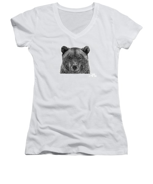 045 Papa Bear Women's V-Neck T-Shirt