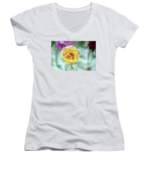 A Rose Is A Rose Women's V-Neck T-Shirt