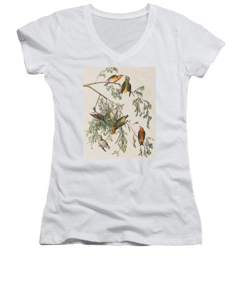 American Crossbill Women's V-Neck T-Shirt (Junior Cut) by John James Audubon