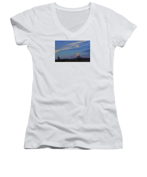 Arizona Desert Women's V-Neck T-Shirt