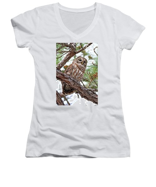 Barred Owl In Pine Tree Women's V-Neck (Athletic Fit)