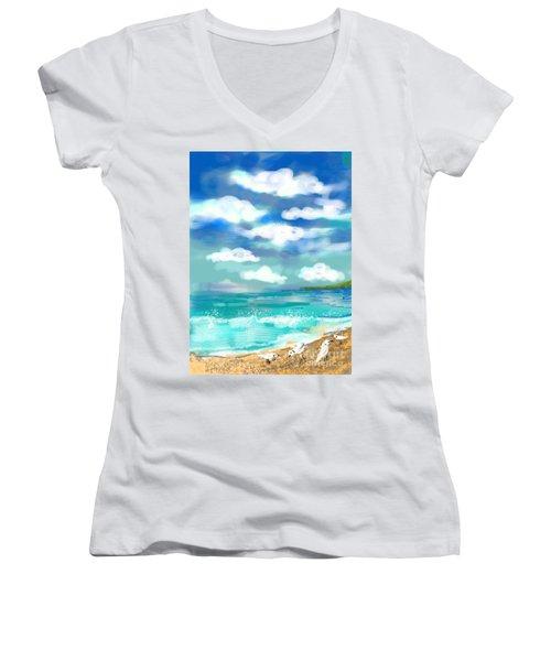 Beach Birds Women's V-Neck T-Shirt