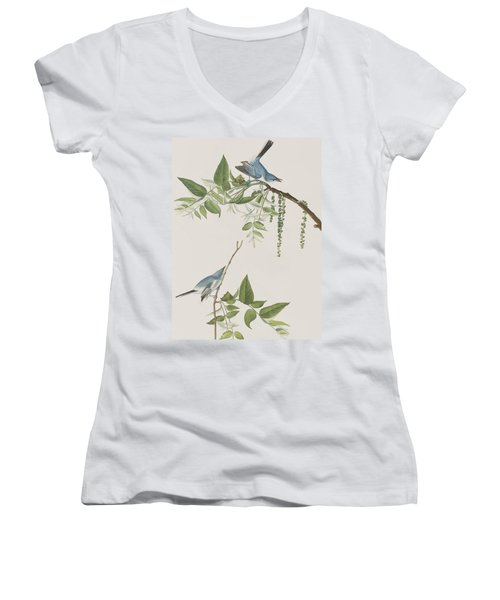 Blue Grey Flycatcher Women's V-Neck T-Shirt (Junior Cut)