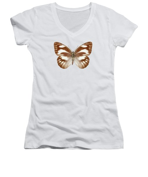 Butterfly Species Appias Libythea  Women's V-Neck (Athletic Fit)