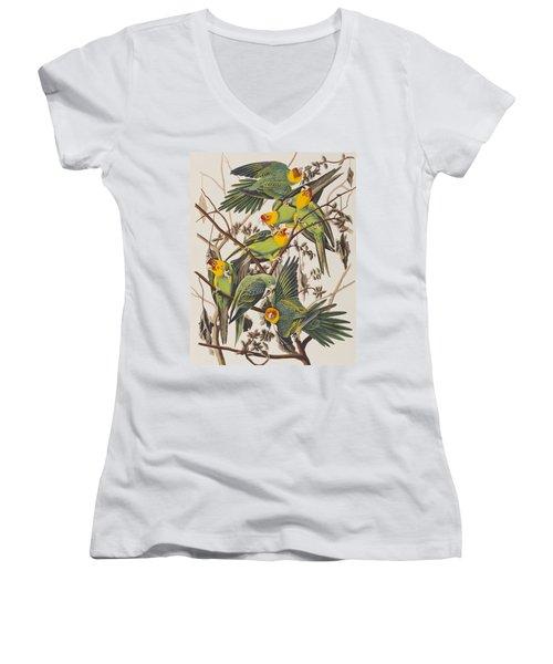 Carolina Parrot Women's V-Neck T-Shirt (Junior Cut) by John James Audubon