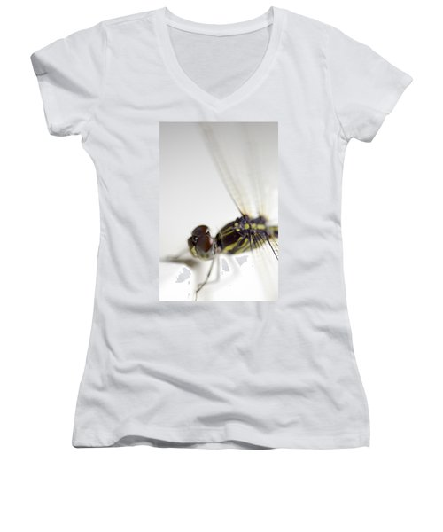 Close Up Shoot Of A Anisoptera Dragonfly Women's V-Neck T-Shirt (Junior Cut) by Ulrich Schade
