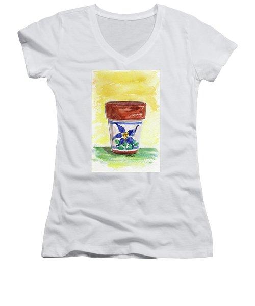 Columbine Container Women's V-Neck T-Shirt (Junior Cut)