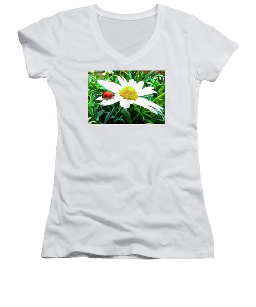 Daisy Flower And Ladybug Women's V-Neck