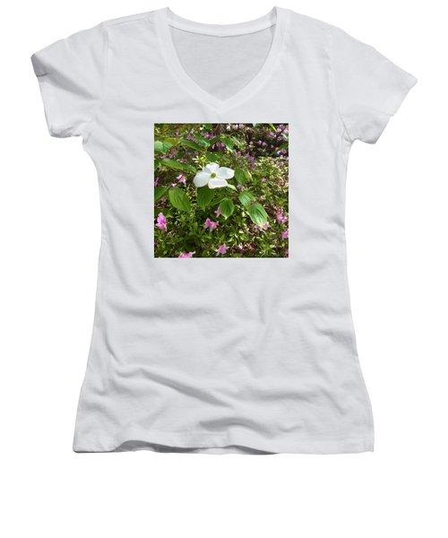 Dogwood Women's V-Neck T-Shirt (Junior Cut) by Kay Gilley