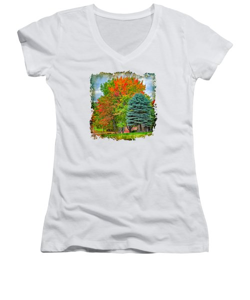 Fall Colors Women's V-Neck T-Shirt (Junior Cut) by John M Bailey