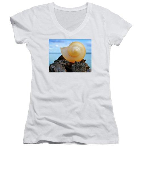 Women's V-Neck T-Shirt (Junior Cut) featuring the photograph Fibonacci by Skip Hunt