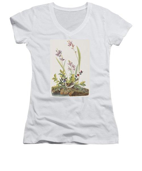Field Sparrow Women's V-Neck T-Shirt (Junior Cut) by John James Audubon