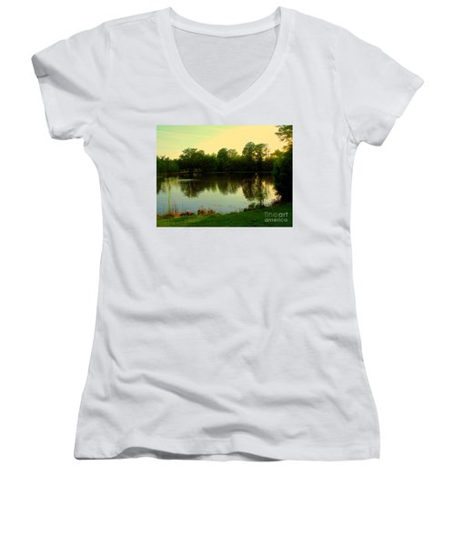 Forest Park Women's V-Neck T-Shirt (Junior Cut) by Nancy Kane Chapman