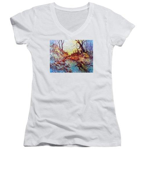 Forgotten Fence Women's V-Neck T-Shirt (Junior Cut) by Carolyn Rosenberger