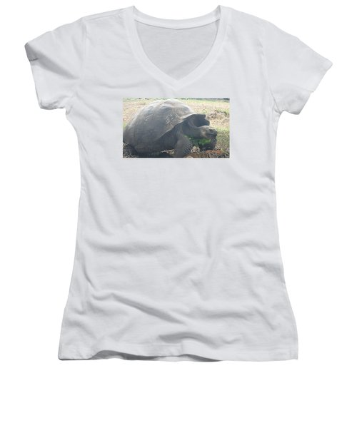 Giant Women's V-Neck T-Shirt (Junior Cut) by Will Burlingham